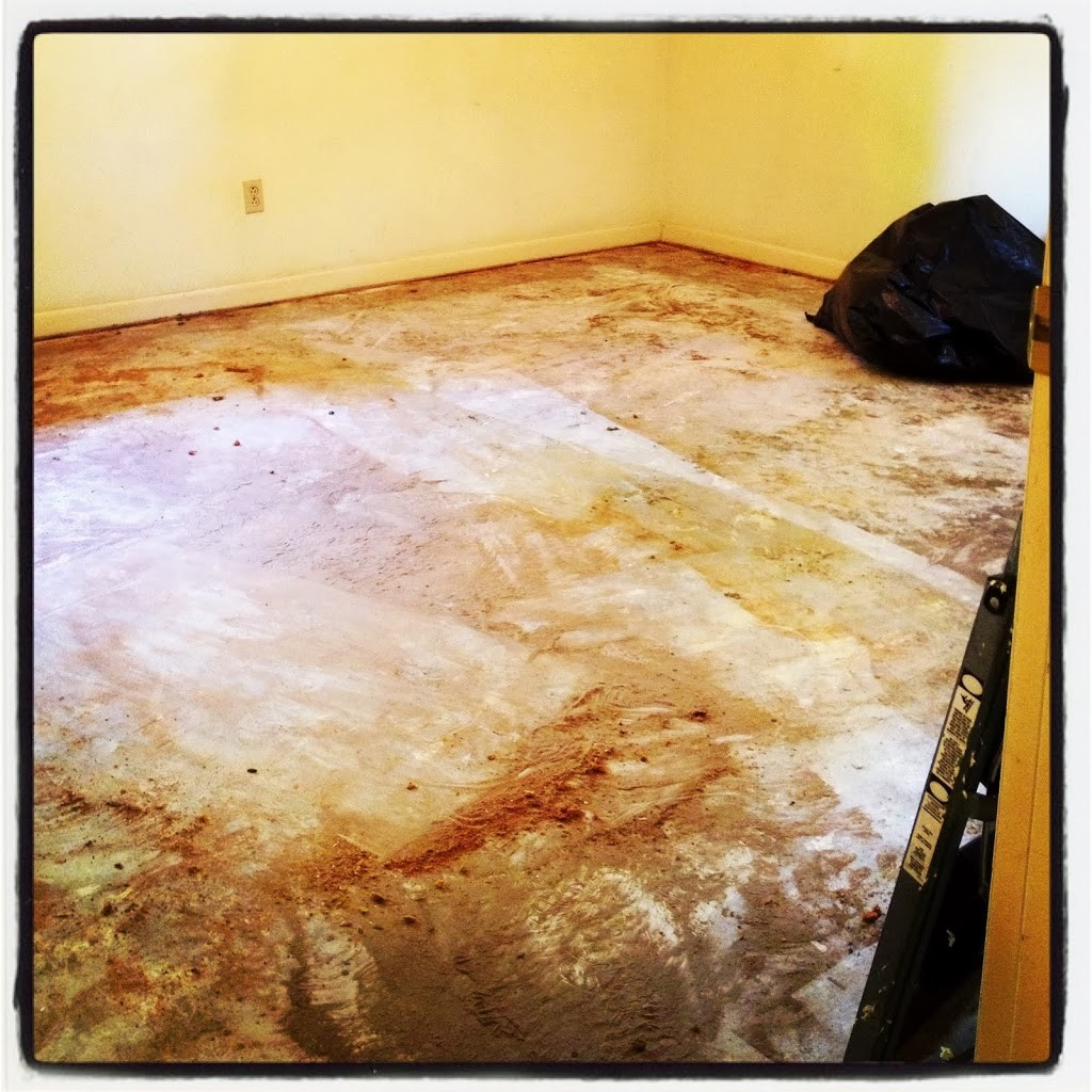 {remodeling thrills} Day Two.