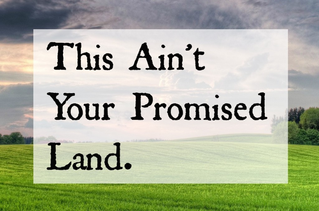 Maybe This Ain't Your Promised Land.
